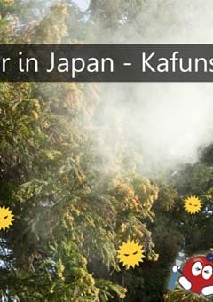 Hay Fever (Kafunsho) in Japan