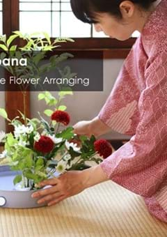 Exploring Ikebana, The Art of Japanese Flower Arranging