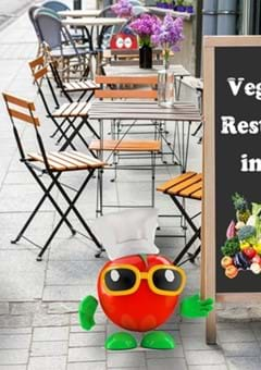 Best Vegetarian Restaurants in Tokyo from Casual to Classy