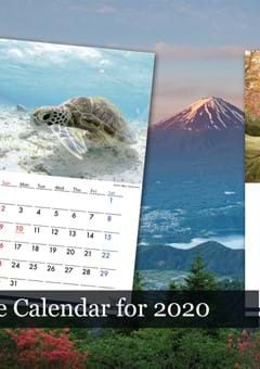 The 2020 Japanese Calendar in English